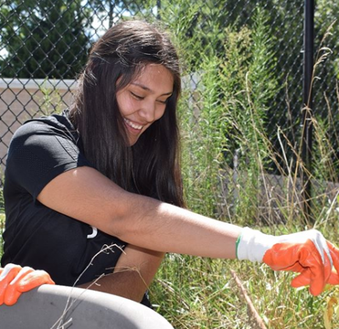 A club member carefully plucking out weeds. This is a necessary step in order to provide space for the plants to grow.