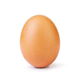 Image from @world_record_egg